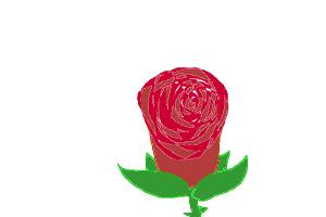 How to Make a Rose With the Half-fill tool