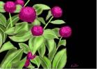Weeds or Flowers?