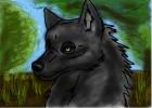 Wolf Doodle :P