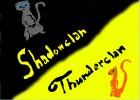 Thunderclan vs. Shadowclan