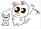 Cat + Hamster(Whatever u think, I NOT A GUINI