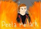 "Peeta Mellark, ""Star crossed lovers"""