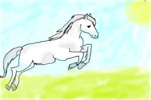 a beutuful white horse