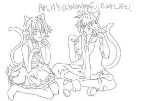 Ah, Its a wonderful Cat Life!