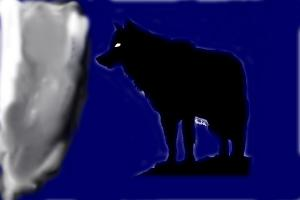 Another wolf