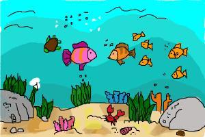 Aquatic Scene!