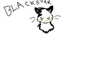 blackstar(warrior cat)