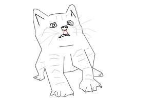 Cat fail (Common mistakes of drawing a cat)