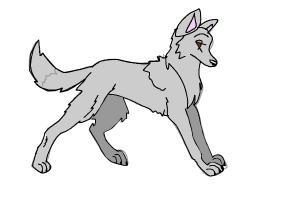 Custom Wolf