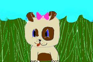 cute puppy in tall grass(contest)
