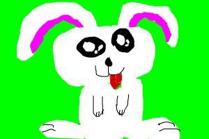 Cutest Bunny Ever!!