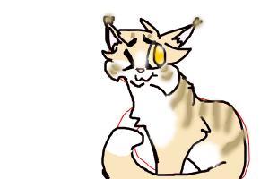 Drawing meh cat! :)