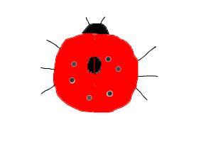 Easy LadyBug
