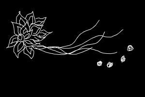 flying flower