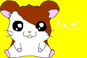 hami = hamster