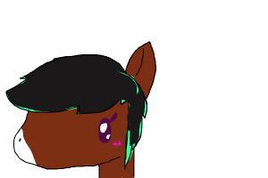 Horse Pony idk