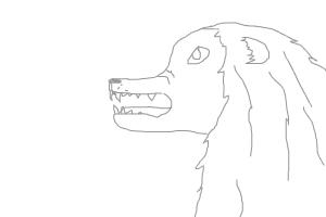 how 2 draw a lion