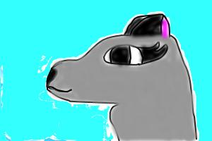 how to draw a arctic wolf (female head)