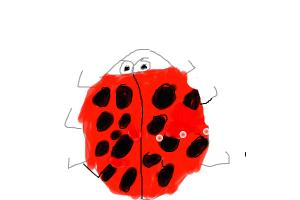 how to draw a lady bug