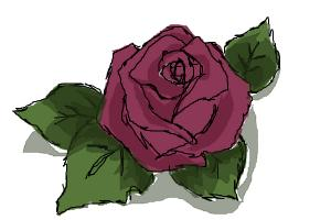 I used the tutorial How to draw a beutiful rose