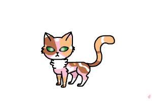 neapolitan cat