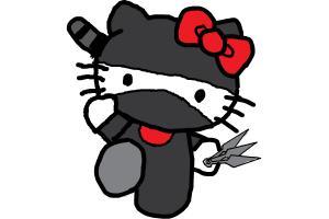ninja kitty