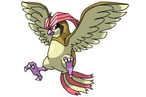 Pidgeotto (Pokemon)