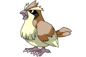 Pidgey (Pokemon)