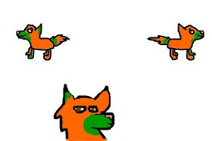 Pumpkin ref