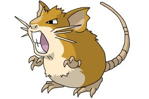 Raticate (Pokemon)