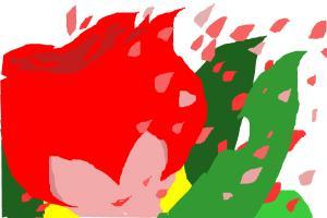 rosemon