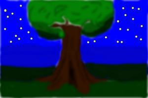 The night tree