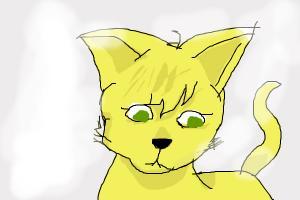 Vanessa as a cat