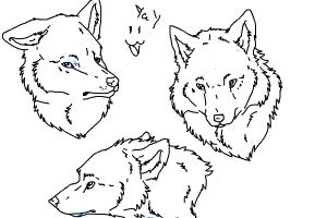 Yee doges