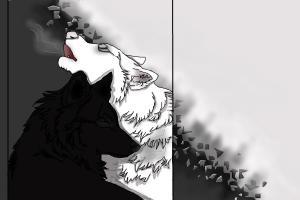 Yin & Yang Wolves