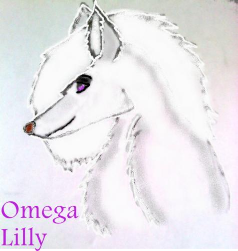 Lilly An Omega Wolf