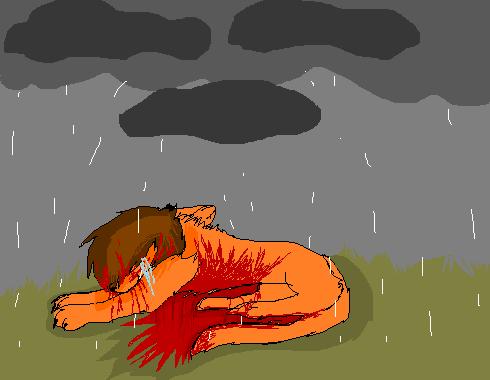 Death Of Cody