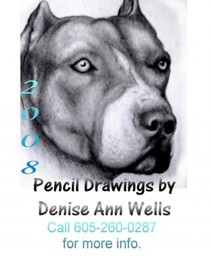 Pitbull Drawing by DeniseWells