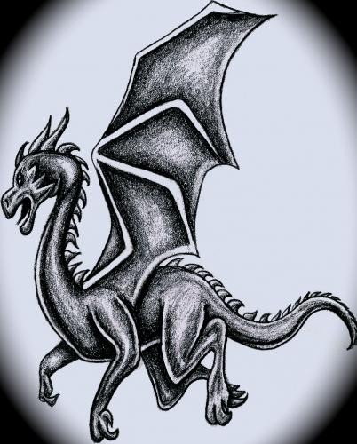 dragon, i learned how to draw from here
