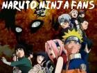 Naruto Ninja Fans