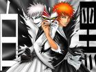 Bleach Rocks!