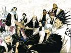 bleach captians