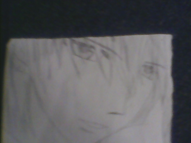 zero from vampire knight (view 1)