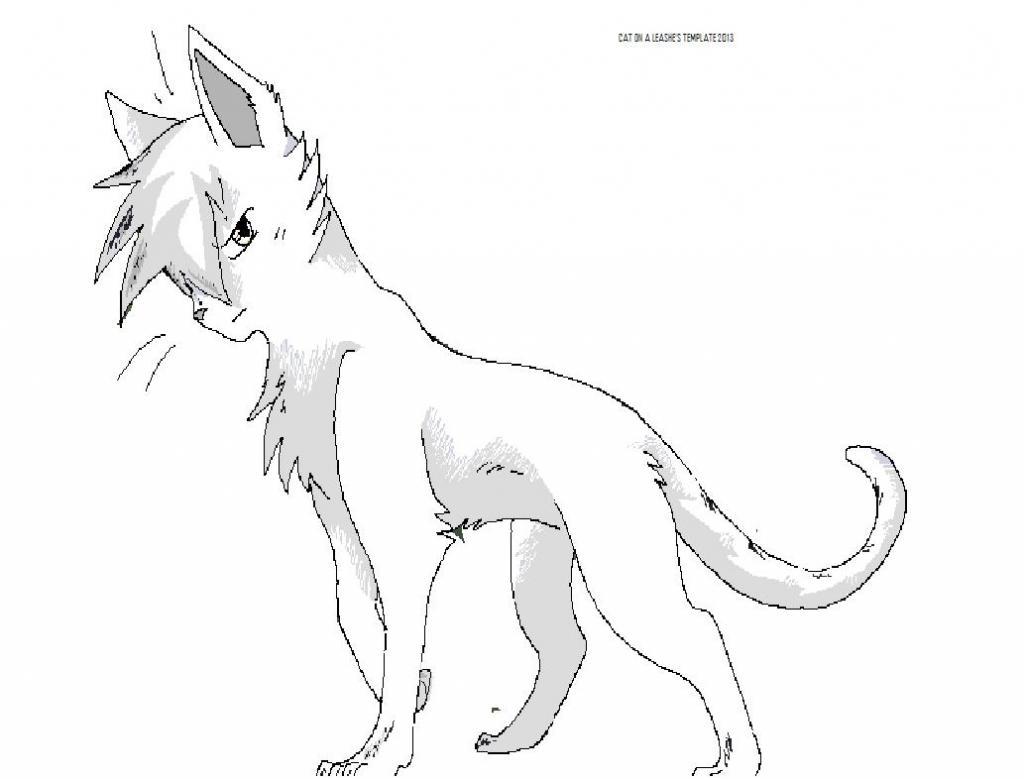 Warrior Cat Drawings