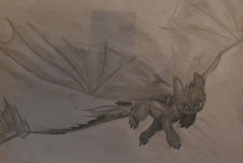 Best How To Train Your Dragon DRAWING!