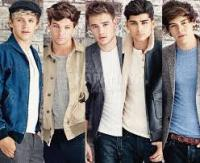 One Direction Nation