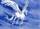 How to Draw Pegasus