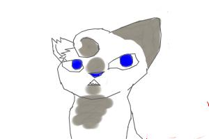 How to Draw Ivypool (My Style)