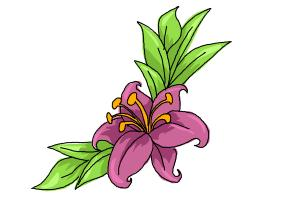 How to draw a beautiful flower drawingnow how to draw a beautiful flower mightylinksfo