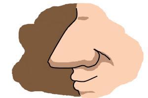 How to draw a cartoon nose